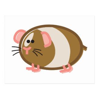 Funny Guinea Pig on White Postcard