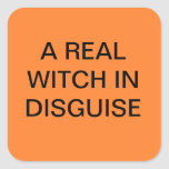 FUNNY HALLOWEEN WITCH STICKERS