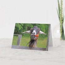 Funny Handsome Goat Father's Day Holiday Card