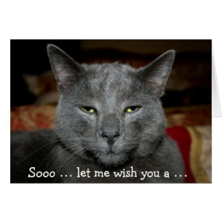Funny Happy Birthday Card with grey Cat
