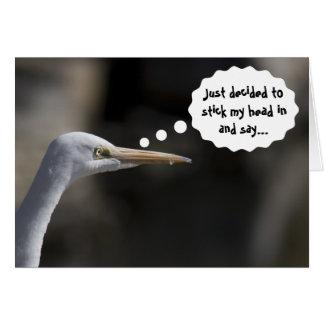Funny Happy Birthday White Crane Bird Card