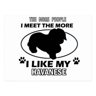 Funny havanese designs postcard