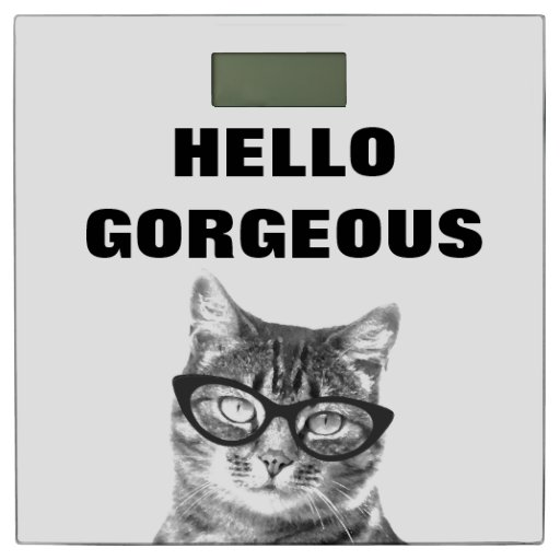 Funny Hello Gorgeous Bathroom Scale With Cute Cat Zazzle