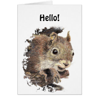 Funny Hello, Hi, with Cute Squirrel Animal Card