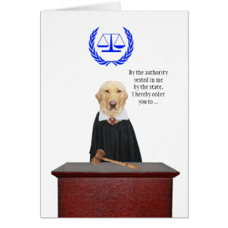 Funny Here Comes the Judge Dog Birthday Greeting Card