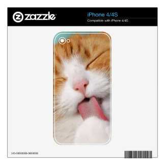 Funny hilarious silly cat skins for iPhone 4