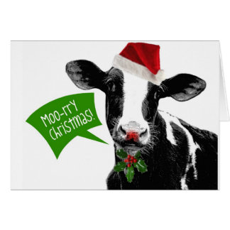 Funny Holiday Cow Merry Moo-rry Christmas Card
