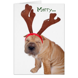 Funny Holiday Greetings from the Dog Greeting Card