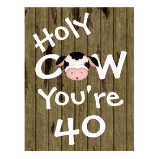 Funny Holy Cow You're 40 Birthday Postcard