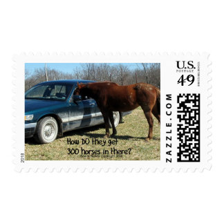 "Funny Horse ""300 Horse"" Stamp"