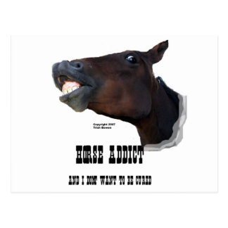 Funny Horse Addict Postcard