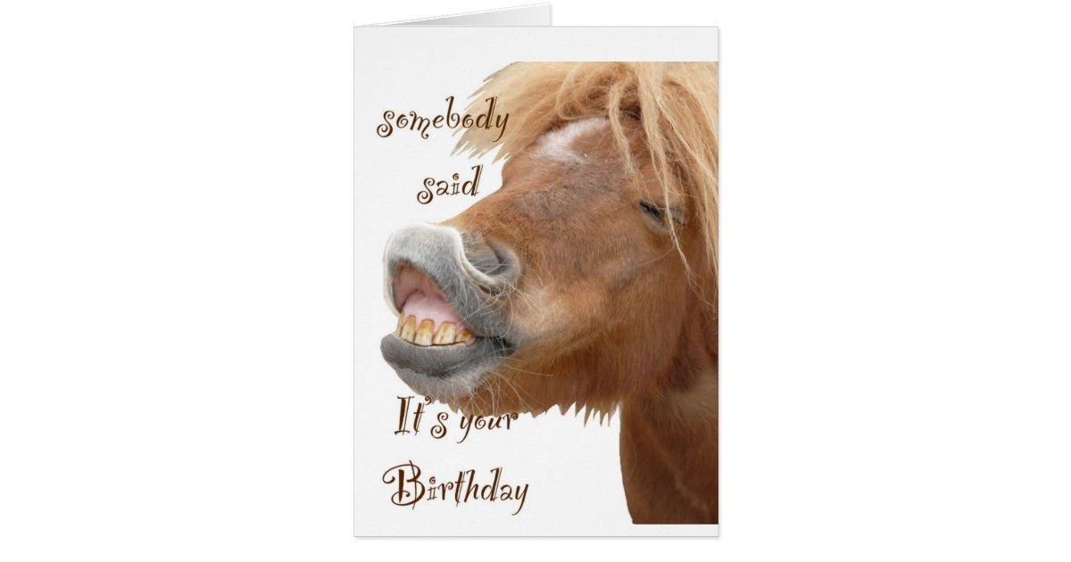 Funny Horse Birthday Card Zazzle Com