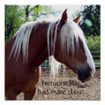 """Funny Horse """"Everyone Has Bad Mane Days"""" Poster"""