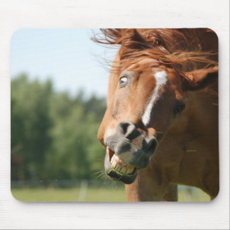 Funny Horse Face with Curled Lips, Crazy Eye Mouse Pad