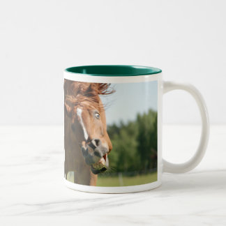 Funny Horse Face with Curled Lips, Crazy Eye Two-Tone Coffee Mug