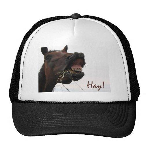Funny Horse: Hay! Trucker Hat