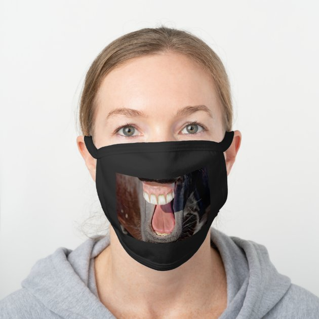 Funny Horse Laughing Teeth Photo Black Cotton Face Mask Zazzle Com