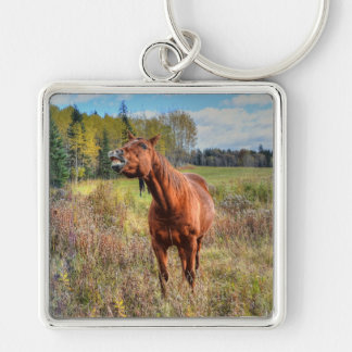 Funny Horse-lover's Sorrel Mare Equine Photo Ranch Keychain
