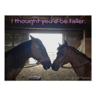 """Funny Horse Poster """"I thought you'd be taller."""""""