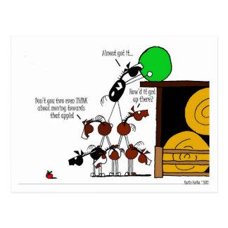 Funny Horse Pyramid Cartoon Postcards