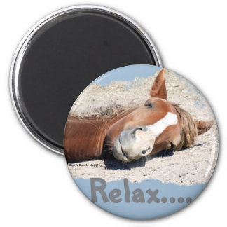 Funny Horse: Relax 2 Inch Round Magnet