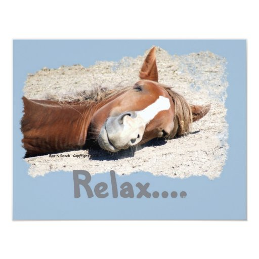 Funny Horse: Relax Card