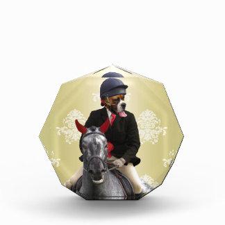 Funny horse rider character award