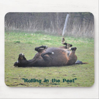 Funny Horse Rolling in Grass Photo Mousepad
