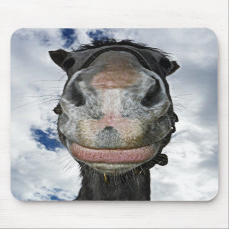 Funny Horse Smiles Mouse Pads