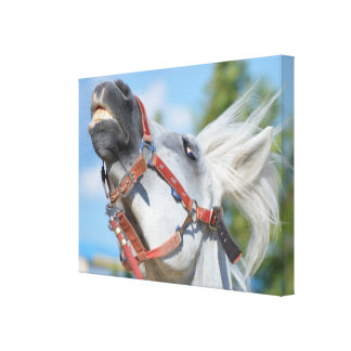 Funny Horse Wrapped Canvas Print