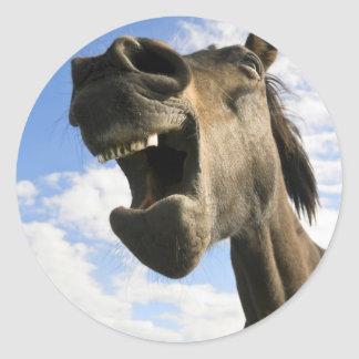 Funny Horse Yawning Classic Round Sticker