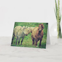 Funny Horses, Father's Day Card