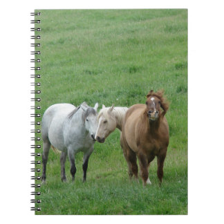 Funny Horses Spiral Notebook