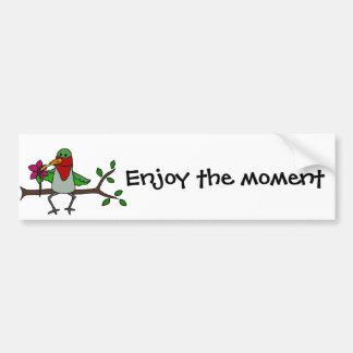 Funny Hummingbird Sipping through Straw Bumper Sticker