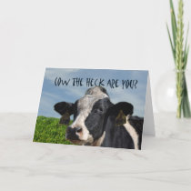 Funny Humorous Cow I Miss You Card