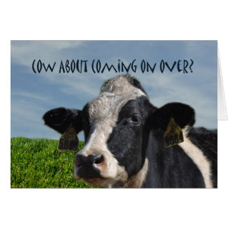 Funny Humorous Cow Party Invitation