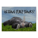 Funny Humorous Getting Older Monkey Happy Birthday Greeting Card