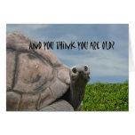 Funny Humorous Giant Sea Turtle Happy Birthday Greeting Card