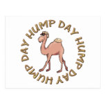 funny hump day camel postcard