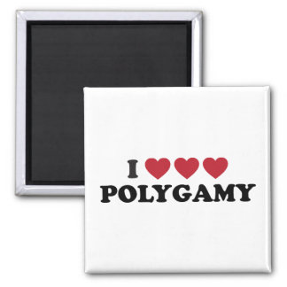 Funny I Heart Polygamy 2 Inch Square Magnet