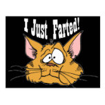 Funny I Just Farted Rude Gifts Post Cards