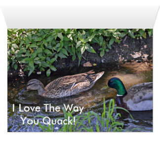 Funny I Love The Way You Quack Card