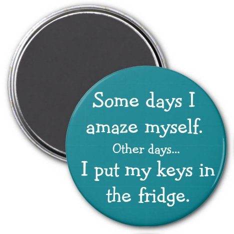 Funny I Put My Keys in the Fridge Round Magnet