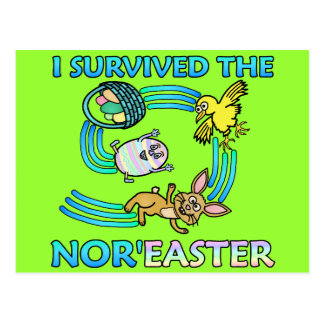 Funny I Survived the Nor Easter Post Card