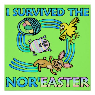 Funny I Survived the Nor'Easter Poster