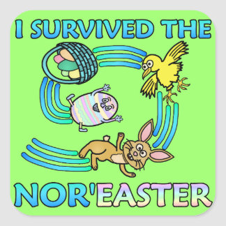 Funny I Survived the Nor'Easter Square Sticker