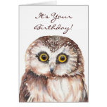 Funny If You Must be Genius, Old Age Owl Greeting Card
