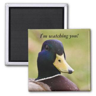 Funny I'm Watching You Duck Fridge Magnet