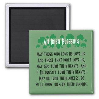 Funny Irish Blessing Fridge Art Magnet