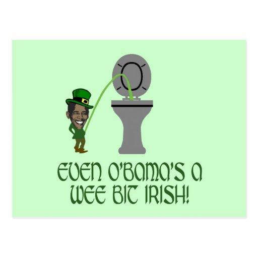Funny Irish Obama Postcard